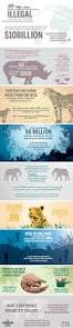 20 best ap environmental science images on pinterest science