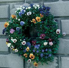 buy wreath topiary forms kinsman garden
