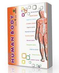 Online Human Body Learn Human Body In English Or Hindi Edutree