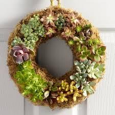 succulent wreath live succulent wreath world market