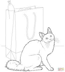 bombay cat coloring page free printable coloring pages