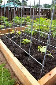 Bunnings Trellis Garden Trellises Add Beauty And Class To Your Garden Latest