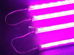 where to buy plant lights plant grow lights for sale chameleon plasma grow light led plant