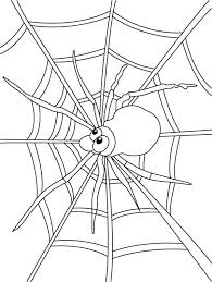 Spider Web Coloring Pages Spider Watch For Insect On Spider Web Spider Web Coloring Page