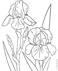 free printable coloring pages of flowers 15777 bestofcoloring com