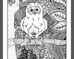 owl coloring sheet etsy