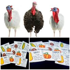 gross thanksgiving pictures thanksgiving brain breaks and gross motor ideas pink oatmeal