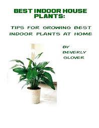 best light for plants good indoor plants for bedroom best indoor plants low light ideas on