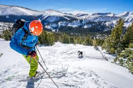 tips u0026 tricks for skiing with your dog kurgo dog products
