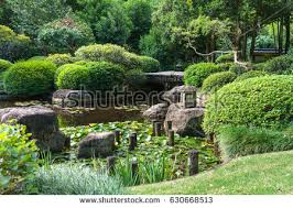 brisbane botanical gardens stock images royalty free images