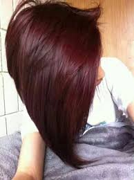 brown cherry hair color chocolate cherry hair color worldbizdata com
