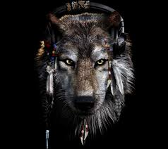 indian and wolf wallpaper images 64 images