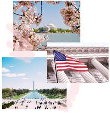 nyc guide tone it up tour your ultimate tiu guide to dc nyc boston