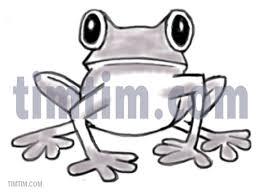 drawings of frogs coloring u0026 free online drawing tool u0026 free