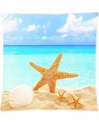 holiday sale zkgk ocean vivid shell starfish sea water beach sand