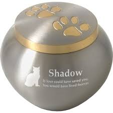 pet urns for cats cat cremation urn golden pair of pawprints