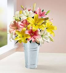 Free Vase Sweet Spring Lilies Free Vase Double Bouquet With Free Clear