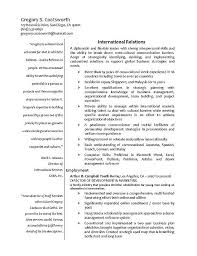 Sample Of Resume Template by International Relations Resume Example International Relations
