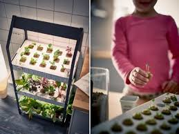 växer ikea joins the hydroponic hype