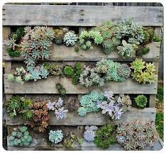 vertical vegetable gardening containers herb wall planter indoor