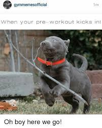 Pre Workout Meme - gymmemesofficial 1 m when your pre workout kicks in oh boy here we
