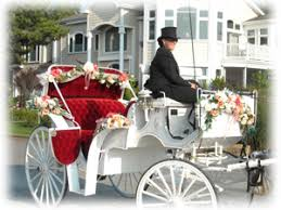 rentals for cape may wedding carriages cape may and buggy rentals for