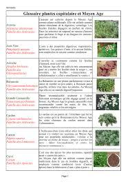 glossaire de cuisine glossaire des plantes
