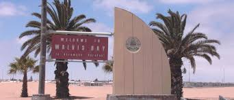 walvis bay your oasis of opportunities
