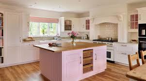 Retro Kitchen Cabinet Kitchen Captivating Pink Retro Kitchen Design With Wooden Kitchen