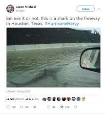 harvey hoax there are no sharks on houston u0027s flooded freeways