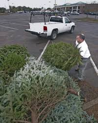 mobile baldwin christmas tree recycling underway al com