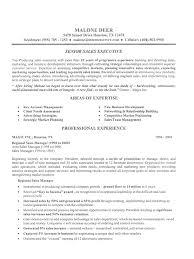 sales executive resume sales executive resume sle