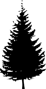 Halloween Tree Silhouette Pattern by 102 Best Shapes Line Images On Pinterest Silhouette Wolves