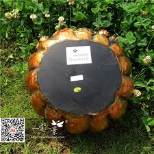 garden ornaments hollow pumpkin decoration gardening ornaments