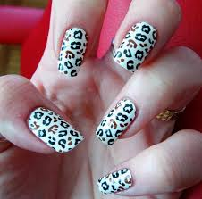 Nail Designs Cheetah And Blue Cheetah Print Charlotta Blue Pink Cheetah Nails