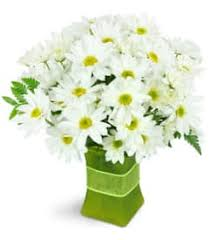 elkton florist elkton florist free flower delivery in elkton md