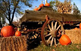 free pumpkin desktop wallpaper farm pumkin wallpaper free