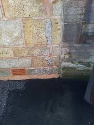 Doff Patio Cleaner Fyfe Stone Wall After Cleaning With The Doff Integra System Max