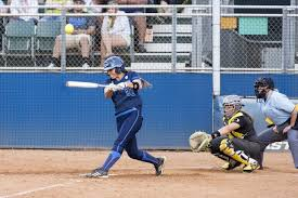 best fastpitch softball bat the top 5 best fastpitch softball bats to get the season started