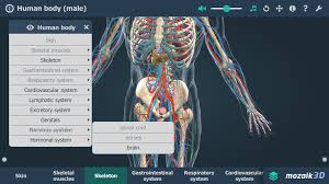 App For Anatomy And Physiology Human Body Male Vr 3d Android Apps On Google Play