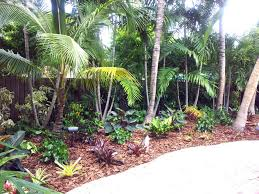 Backyard Landscaping Ideas by Tropical Backyard Home Decorating Interior Design Bath