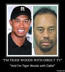 Tiger Woods Memes - are tiger woods memes worth an investment memeeconomy