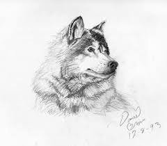 simple pencil sketches of nature drawing art u0026 skethes