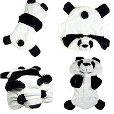 Panda Bear Halloween Costumes Petpiper Puppy Funny Halloween Costumes Dogs Small Dog