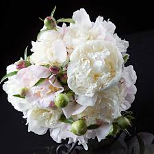 wedding flowers types wedding flowers the 7 most popular types for bridal bouquets