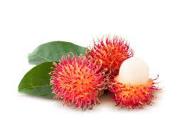 fruit similar to lychee barth fruit rambutan