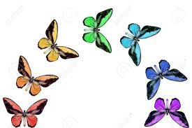 seven butterflies seven colours of the rainbow stock photo