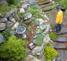 water saving ideas for your garden homes green living