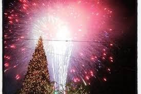the grove christmas tree lighting la party earth