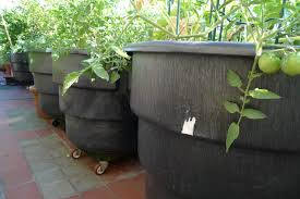 extra large planters for outside plant extra large planters awful